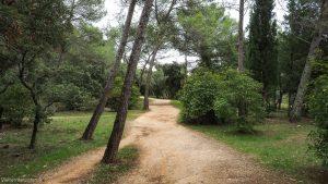 Bois De Montmaur Montpellier 10