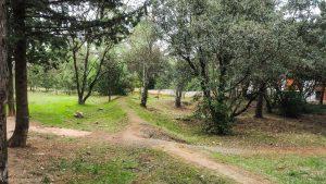 Bois De Montmaur Montpellier 14