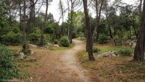 Bois De Montmaur Montpellier 17