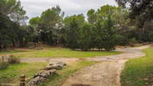 Bois De Montmaur Montpellier 18