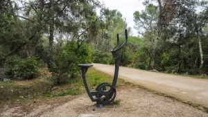 Bois De Montmaur Montpellier 19