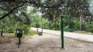 Bois De Montmaur Montpellier 21
