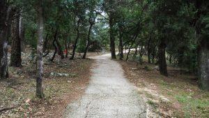 Bois De Montmaur Montpellier 6