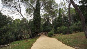 Bois De Montmaur Montpellier 7