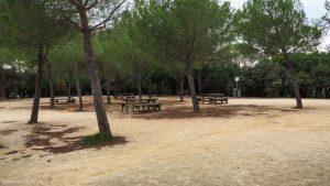 Bois De Montmaur Montpellier 8