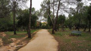 Bois De Montmaur Montpellier 9