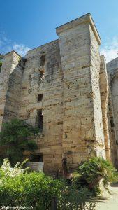 Cathédrale De Maguelone Villeneuve Les Maguelone 5