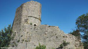 Chateau Daumelas 12