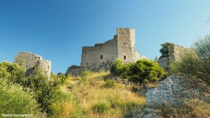 Chateau Daumelas 2