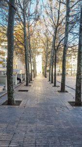 Esplanade De Leurope Montpellier 5