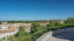 Jardin De La Motte A Mauguio 9