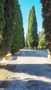Jardin Des Plantes Montpellier 2