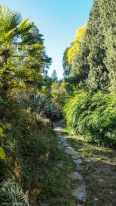 Jardin Des Plantes Montpellier 20