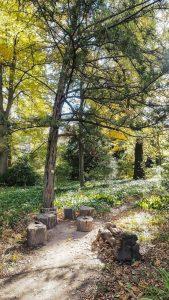 Jardin Des Plantes Montpellier 24