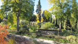 Jardin Des Plantes Montpellier 28
