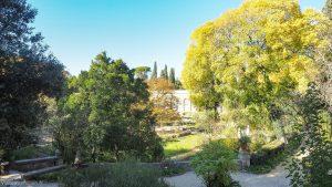 Jardin Des Plantes Montpellier 29