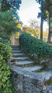 Jardin Des Plantes Montpellier 3