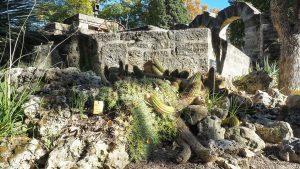 Jardin Des Plantes Montpellier 7