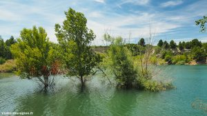 Lac De Cambellies Loupian 6