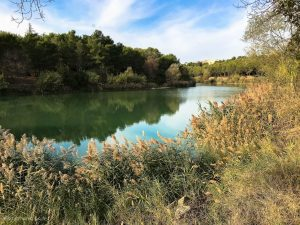 Lac Des Garrigues Montpellier 1