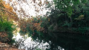 Lac Des Garrigues Montpellier 16