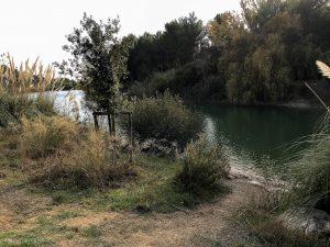 Lac Des Garrigues Montpellier 3