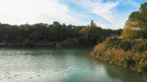 Lac Des Garrigues Montpellier 8