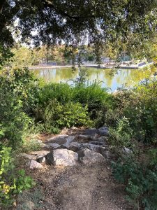 Les Jardins Dalco Montpellier 2
