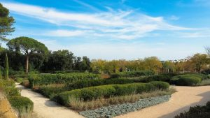 Les Jardins Dalco Montpellier 6