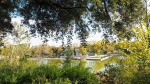 Les Jardins Dalco Montpellier 9