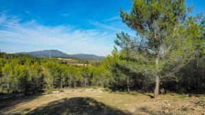 Parc De Coulondres Philippe Eldridge Saint Gely Du Fesc 12