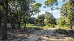 Parc De Coulondres Philippe Eldridge Saint Gely Du Fesc 15