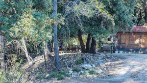 Parc De Coulondres Philippe Eldridge Saint Gely Du Fesc 16