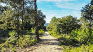 Parc De Coulondres Philippe Eldridge Saint Gely Du Fesc 20