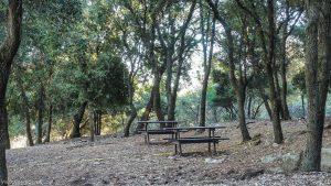 Parc De Coulondres Philippe Eldridge Saint Gely Du Fesc 8