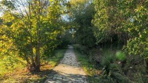 Parc De La Grande Lironde Montpellier 5