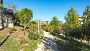 Parc De La Mairie De Montpellier 15
