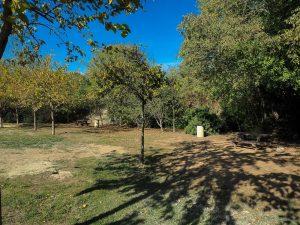 Parc De La Peyriere Saint Jean De Vedas 10