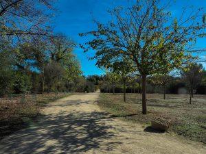 Parc De La Peyriere Saint Jean De Vedas 8