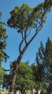 Parc De Lorangerie Lunel Viel 14