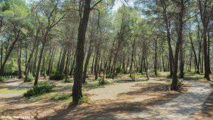 Parc Departemental De Bessilles Montagnac 11