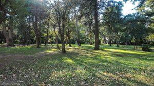 Parc Du Chateau De Grammont Montpellier 2
