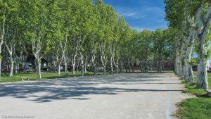 Parc Du Chateau De Pignan 4