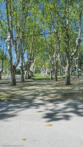 Parc Du Chateau De Pignan 7