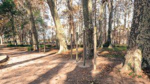 Parc Du Chateau Des Eveques Laverune 15