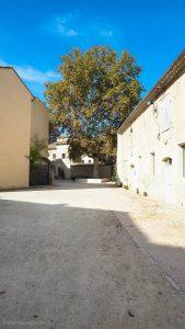 Parc Du Chateau Des Eveques Laverune 17