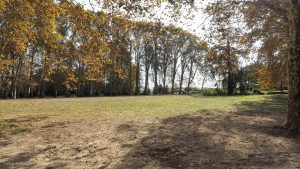 Parc Du Chateau Des Eveques Laverune 5