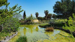 Parc Du Levant Palavas Les Flots 18