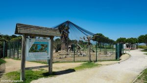 Parc Du Levant Palavas Les Flots 9