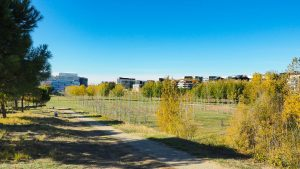Parc Georges Charpak Montpellier 1